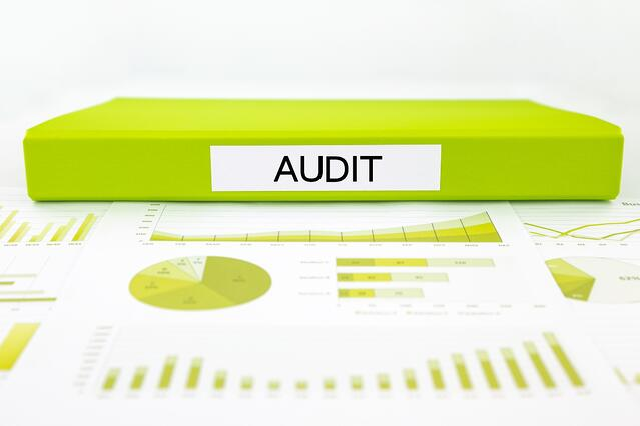 Audit Binder.jpg